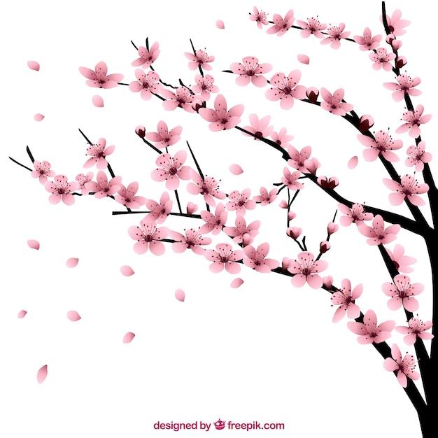 Wiśniowe drzewo z kwiatami