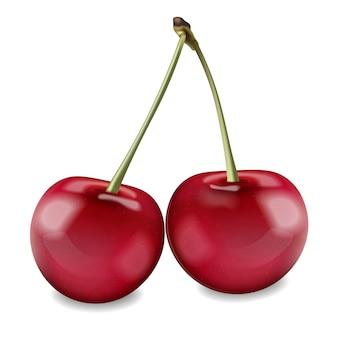Wiśniowe owoce