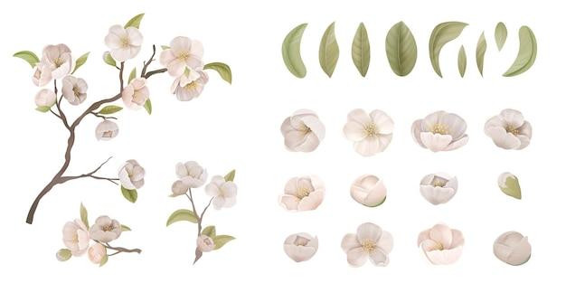 Wiśniowy zestaw kwiatów izolować na białym tle. realistyczny kwiat sakury, zielone liście i gałęzie, elementy projektu graficznego do druku banera, plakatu lub dekoracji ulotki. ilustracja wektorowa