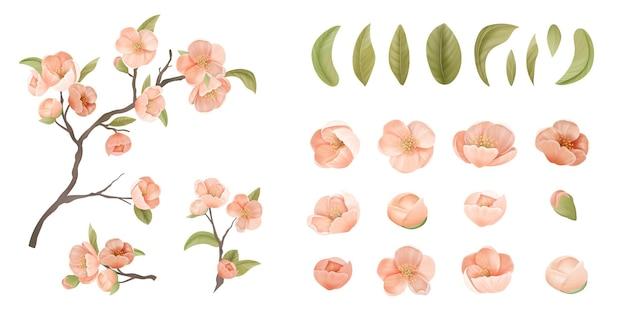 Wiśniowy zestaw kwiatów izolować na białym tle. różowy kwiat sakury, zielone liście i gałęzie, elementy projektu graficznego do druku baner, plakat lub dekoracja ulotki. ilustracja wektorowa