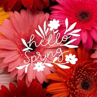 Witaj wiosna napis ze zdjęciem koncepcji