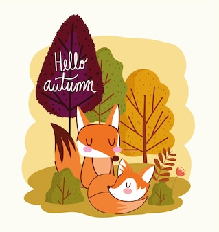 Witam jesienną parę lisów