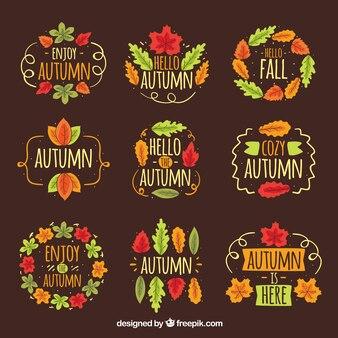 Witam kolekcja jesień odznaka z liści