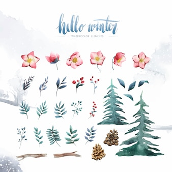 Witam zimowe rośliny i kwiaty malowane przez akwarela wektor
