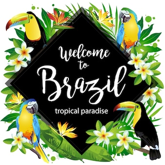Witamy w brazylii!