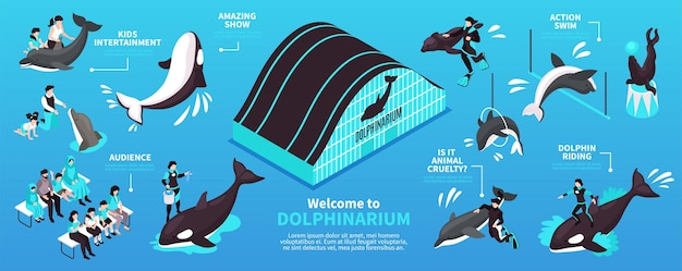 Witamy w izometrycznym układzie infografiki delfinarium z jazdą na delfinach i elementami rozrywki dla dzieci