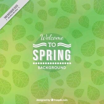 Witamy w spring green background