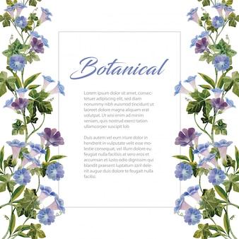 Wodnego koloru ranku chwały błękitnego kwiatu botaniczny bukiet na białej tło ilustraci ramie