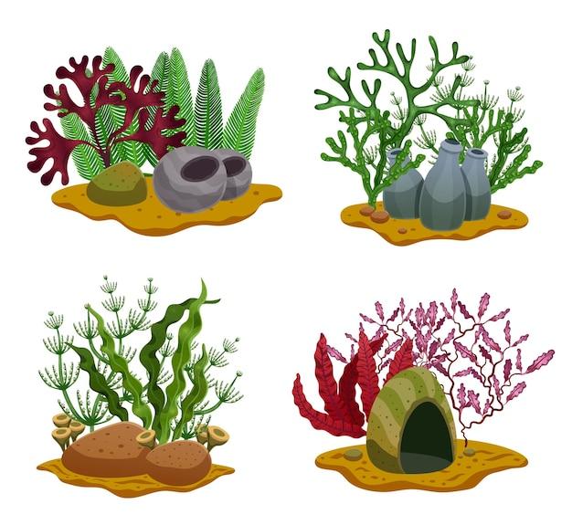 Wodorosty morskie 4 płaskie podwodne kolorowe elementy dekoracyjne z różnymi rodzajami glonów kamienie oświetlające na białym tle ilustracja