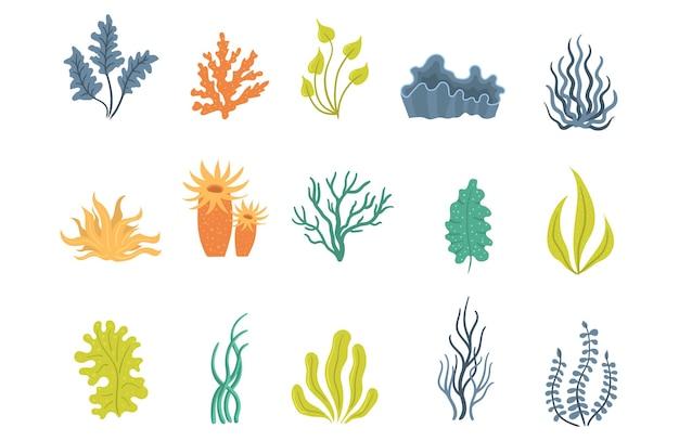 Wodorosty morskie podwodne morskie rośliny morskie muszle wodne glony zestaw sylwetki koralowców oceanicznych