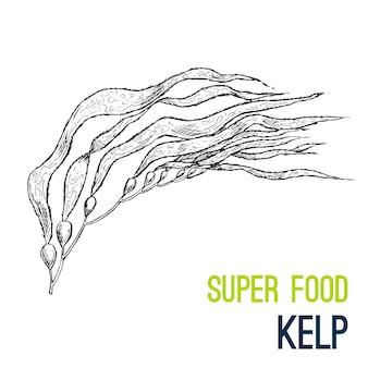 Wodorosty morskie. wyciągnąć rękę super jedzenie