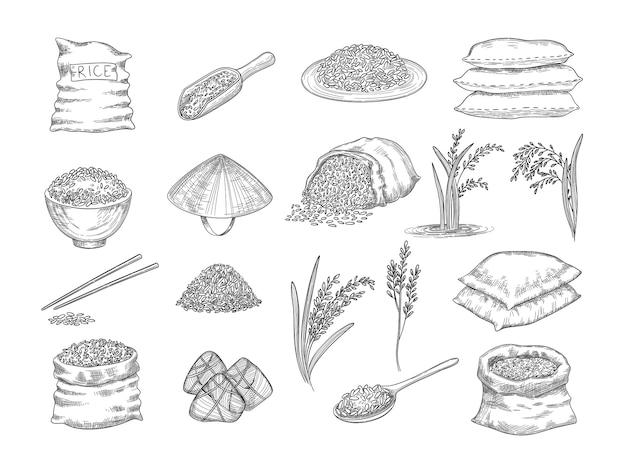 Worki ryżowe. naturalne rolnictwo przedmioty ziarna pszenicy ryż żywności ręcznie rysowane kolekcji. ilustracja worek ryżu, ziarna i nasiona, stylizowany szkic organiczny