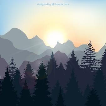 Wschód słońca krajobraz w lesie
