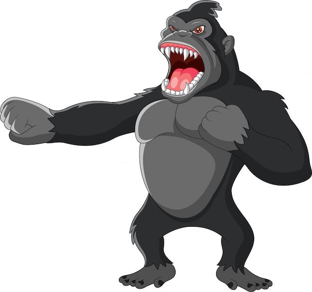 Wściekły goryl uderza w klatkę piersiową