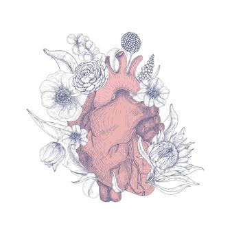 Wspaniałe anatomiczne serce otoczone pięknymi kwitnącymi kwiatami ręcznie rysowane