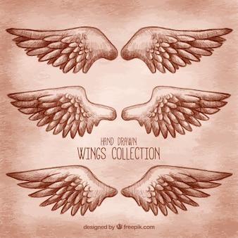 Wybór dużych ręcznie rysowanych skrzydeł