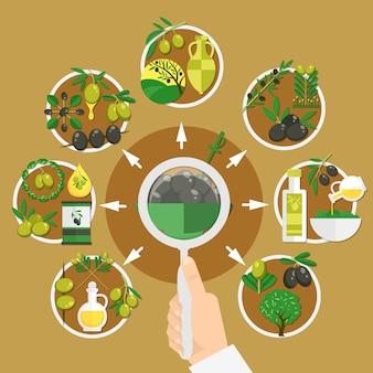 Wybór składu oliwek