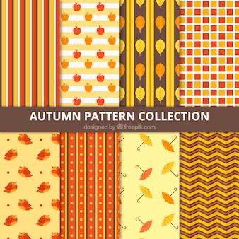 Wybór wzorów z elementów jesiennych
