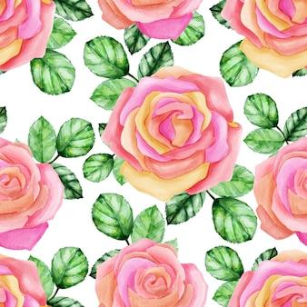 Wzór akwarela róż