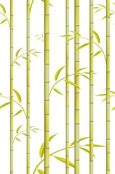 Wzór bambusa. tło zielone drzewo.