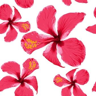 Wzór czerwone kwiaty hibiskusa na na białym tle. rysunek w suchym stylu przypominającym akwarele.