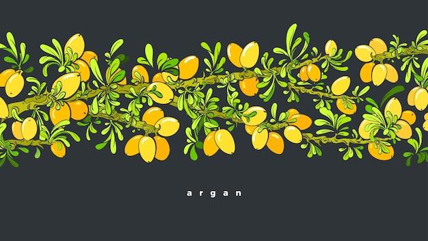 Wzór drzewa arganowego. fasola oleista, zielone liście. graficzna ilustracja