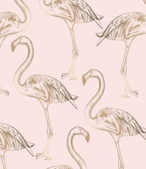 Wzór flamingo. dekory linii sztuka tekstura retro