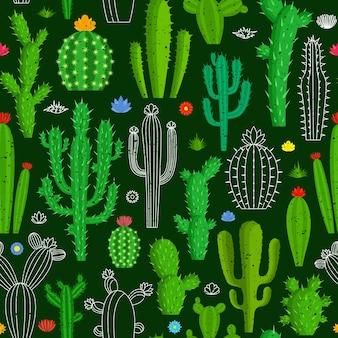 Wzór kaktusa. różne rodzaje kaktusów