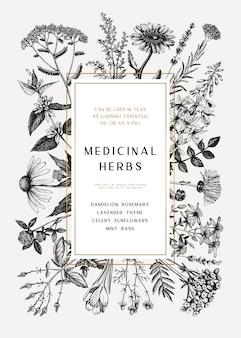 Wzór karty ziół leczniczych lub zaproszenie. ręcznie rysowane ilustracje kwiaty, chwasty i łąki. szablon rośliny letnie. tło botaniczne z kwiatowymi elementami w stylu grawerowanym.