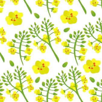 Wzór kwiat rzepaku canola żółte zielone kwiaty w tle