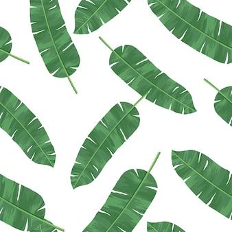 Wzór liści bananowych