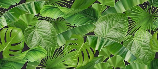 Wzór liści dżungli, realistyczne tło wektor 3d