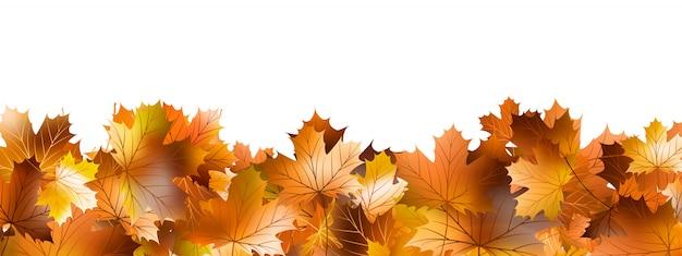 Wzór Liści Jesienią. Premium Wektorów