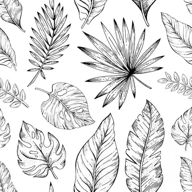 Wzór liścia. tło liści palmowych. kwiecista tekstura. czarno-białe rośliny tropikalne. naturalna grafika liniowa. ilustracja tapety dżungli. egzotyczny letni nadruk