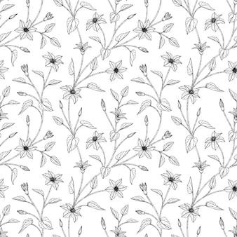 Wzór powojnik kwiatowy ręcznie rysowane ilustracja z grafiką na białym tle.