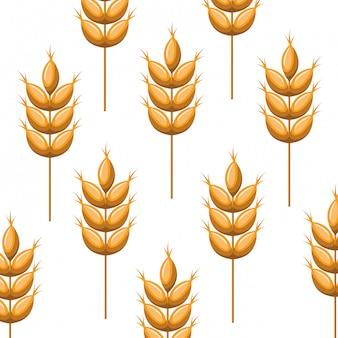 Wzór pszenicy pozostawia ikona na białym tle