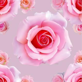 Wzór różowa róża