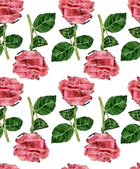 Wzór róży akwarela