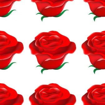 Wzór róży na białym tle