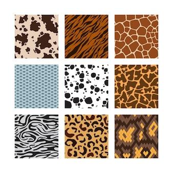 Wzór skóry zwierząt. zoo bezszwowe tła kolekcja zebra tygrys żyrafa wąż skór wektor zestaw. dzika przyroda w zoo w afryce, ilustracja futra z dżungli w afryce