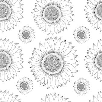 Wzór słonecznika. ręcznie rysowane ilustracji. szkic rocznika składnika żywności.
