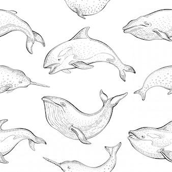 Wzór wielorybów. bezszwowe tło z płetwal błękitny, narwhal, orca killer. cute ilustracji zwierząt morskich. rysunek oceanu morskiego kreskówka.