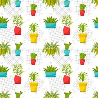Wzór z doniczkowych roślin doniczkowych. kwiaty domowe, figi, kaktusy, trojeści, aloes, paproć.