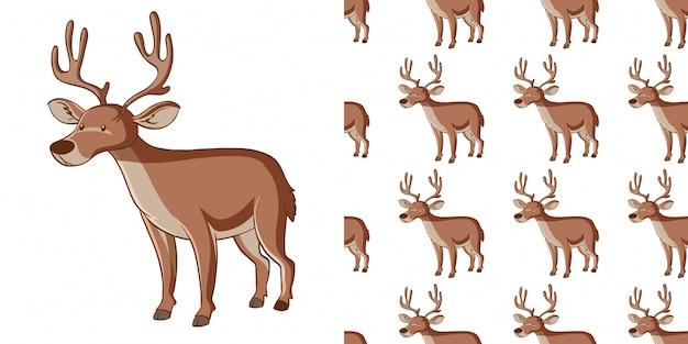 Wzór z jelenia
