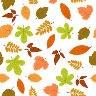Wzór z jesiennych liści. ilustracja wektorowa.
