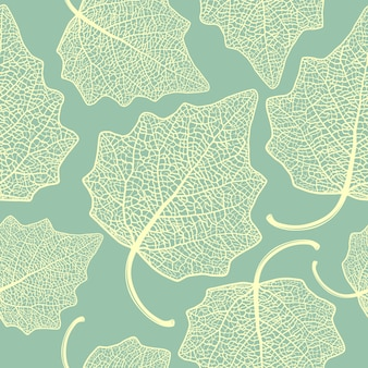 Wzór z liści topoli szkieletowej.
