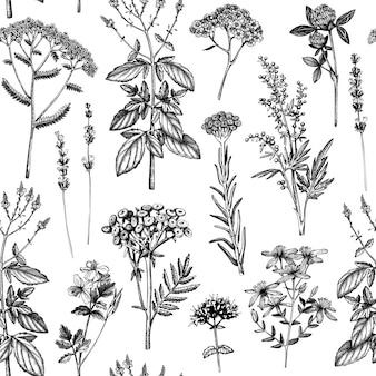 Wzór z przyprawami i ziołami