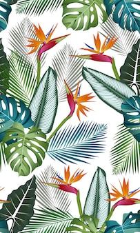 Wzór z ptakiem raju: liście tropikalne, palmy, monstera, alocasia, kalatea, liść dżungli