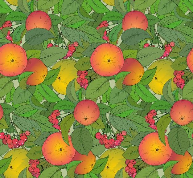 Wzór z ręcznie rysowane gałęzi jabłek i jagód guelder rose.