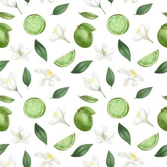Wzór z ręcznie rysowane limonki